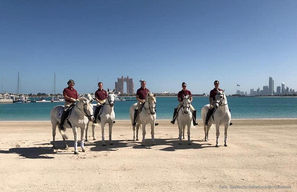 Spanischer reiter sm Spanischer Reiter