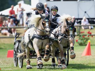Falsterbo Horse Show SWE 2019 - Driving