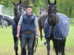 RWHS Horseinspection by Karolina Sw  rdh  10