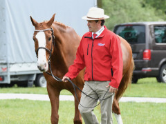 RWHS Horseinspection by Karolina Sw  rdh  14