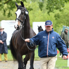 RWHS Horseinspection by Karolina Sw  rdh  18