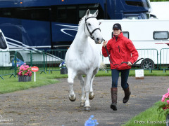 RWHS Horseinspection by Karolina Sw  rdh  20