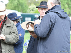 RWHS Horseinspection by Karolina Sw  rdh  21