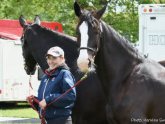 RWHS Horseinspection by Karolina Sw  rdh  8