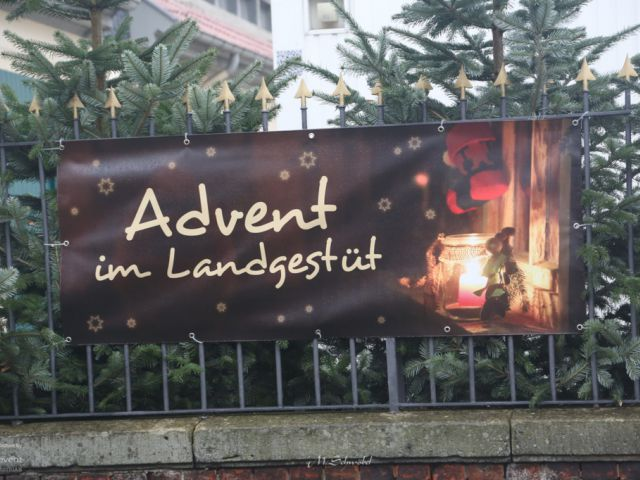 Advent im Landgestüt Celle