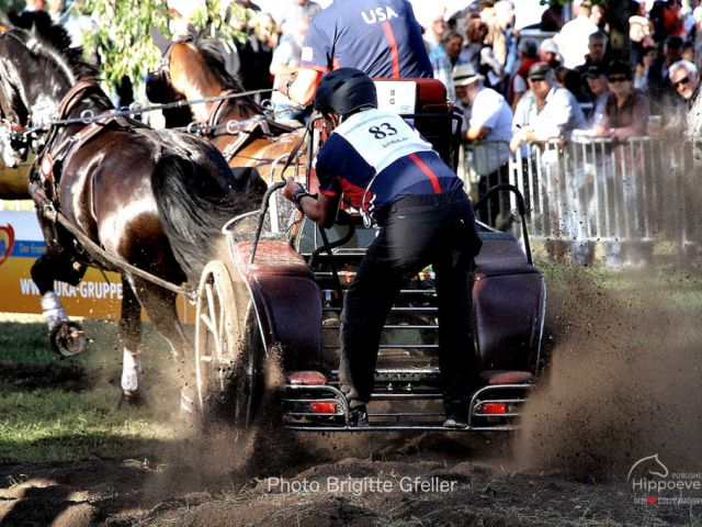 FEI World Championships for Pairs 2019 - Marathon