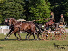 CAN Boguslawice POL   Dressage   102
