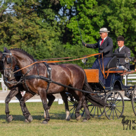 CAN Boguslawice POL   Dressage   106