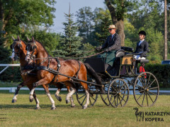 CAN Boguslawice POL   Dressage   107