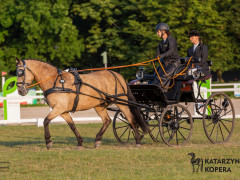 CAN Boguslawice POL   Dressage   112