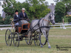 CAN Boguslawice POL   Dressage   65