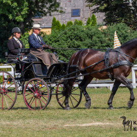 CAN Boguslawice POL   Dressage   68
