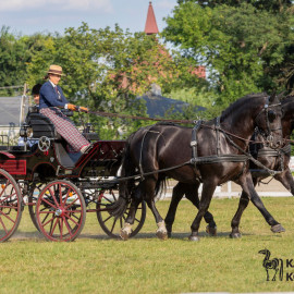 CAN Boguslawice POL   Dressage   93